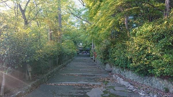 伊居太神社の参道