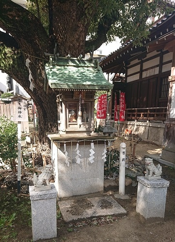 富島神社の大楠宮