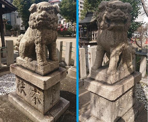 富島神社の狛犬