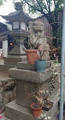 福島天満宮の狛犬